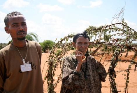 Flüchtlinge in Dadaab